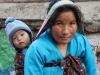 Mandjesvlechter Nepal